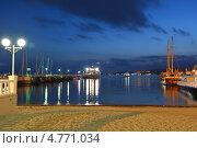 Купить «Ночной пейзаж с видом на порт и бухту, курорт Геленджик», эксклюзивное фото № 4771034, снято 18 июня 2013 г. (c) Игорь Архипов / Фотобанк Лори