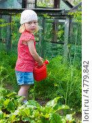 Купить «Девочка поливает грядки», фото № 4779842, снято 30 июня 2011 г. (c) Марина Славина / Фотобанк Лори
