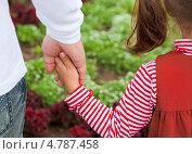 Купить «Руки отца и ребенка», фото № 4787458, снято 9 июня 2013 г. (c) Элина Гаревская / Фотобанк Лори