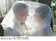 Купить «Жених и невеста стоят под фатой и смотрят друг на друга», фото № 4791034, снято 10 мая 2013 г. (c) ElenArt / Фотобанк Лори