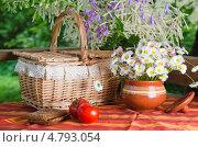 Летний натюрморт с цветами и едой. Стоковое фото, фотограф Игорь Соколов / Фотобанк Лори