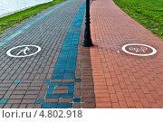 Купить «Пешеходная и вело дорожки», фото № 4802918, снято 12 июня 2013 г. (c) Сергей Трофименко / Фотобанк Лори