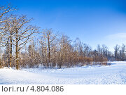Купить «Зимний пейзаж», фото № 4804086, снято 24 сентября 2018 г. (c) Станислав Фридкин / Фотобанк Лори