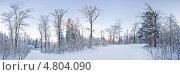 Купить «Зимний лес», фото № 4804090, снято 20 апреля 2018 г. (c) Станислав Фридкин / Фотобанк Лори