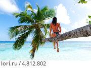 Купить «Девушка в купальнике сидит на стволе пальмы на фоне моря», фото № 4812802, снято 26 сентября 2012 г. (c) Иван Михайлов / Фотобанк Лори