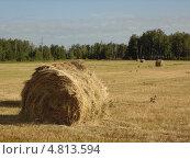Купить «Стог сена на поле», фото № 4813594, снято 11 февраля 2012 г. (c) елена прекрасна / Фотобанк Лори