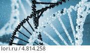 Купить «Молекула ДНК на голубом фоне», фото № 4814258, снято 19 февраля 2020 г. (c) Sergey Nivens / Фотобанк Лори