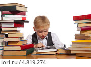 Купить «Маленький мальчик читает книгу», фото № 4819274, снято 25 июня 2013 г. (c) Владимир Мельников / Фотобанк Лори