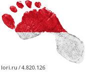 Купить «Нарисованный в форме следа ноги флаг Индонезии», фото № 4820126, снято 18 февраля 2020 г. (c) Клинц Алексей / Фотобанк Лори