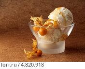 Купить «Миска мороженого с физалисом», фото № 4820918, снято 16 августа 2018 г. (c) Food And Drink Photos / Фотобанк Лори