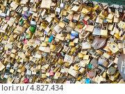 Купить «Замки влюбленных на мосту в Париже. Франция», фото № 4827434, снято 24 июня 2013 г. (c) Екатерина Овсянникова / Фотобанк Лори