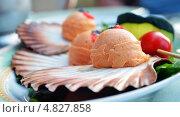 Паста из рыбы на плоской морской раковине. Стоковое фото, фотограф Анастасия Марисенкова / Фотобанк Лори