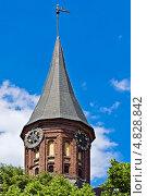 Купить «Башня Кафедрального собора Кёнигсберга. Готика, 14 век.», фото № 4828842, снято 9 июня 2013 г. (c) Сергей Трофименко / Фотобанк Лори