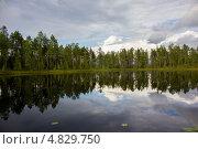 Купить «Озеро в северной Карелии», эксклюзивное фото № 4829750, снято 6 июля 2013 г. (c) Наталья Осипова / Фотобанк Лори