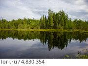 Купить «Летний пейзаж с маленьким озером в северной Карелии», эксклюзивное фото № 4830354, снято 6 июля 2013 г. (c) Наталья Осипова / Фотобанк Лори