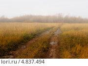 Просёлочная дорога в тумане. Стоковое фото, фотограф Юрий Селиванов / Фотобанк Лори