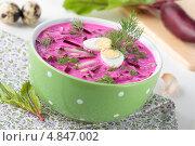 Купить «Холодный суп со свеклой, огурцами и укропом», фото № 4847002, снято 14 июля 2013 г. (c) Наталья Евстигнеева / Фотобанк Лори