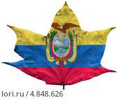 Купить «Изображенный на сухом осеннем листе флаг Эквадора», фото № 4848626, снято 18 февраля 2020 г. (c) Клинц Алексей / Фотобанк Лори
