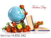 Купить «С днем учителя! Глобус и книга с цветами», фото № 4850342, снято 15 июля 2013 г. (c) Peredniankina / Фотобанк Лори