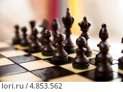 Купить «Черные шахматные фигуры в начальной позиции», фото № 4853562, снято 6 сентября 2012 г. (c) Клинц Алексей / Фотобанк Лори
