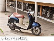 Купить «Мотороллер Yamaha», эксклюзивное фото № 4854270, снято 30 июня 2013 г. (c) Алёшина Оксана / Фотобанк Лори