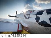 Истребитель P51 (2013 год). Редакционное фото, фотограф Александров Алексей / Фотобанк Лори