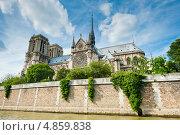 Купить «Собор Парижской Богоматери (Нотр-Дам-де-Пари; Notre Dame de Paris). Париж. Франция», фото № 4859838, снято 29 июня 2013 г. (c) Екатерина Овсянникова / Фотобанк Лори