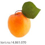 Купить «Спелый абрикос с зелёным листиком изолированно на белом фоне», фото № 4861070, снято 12 июля 2013 г. (c) Литвяк Игорь / Фотобанк Лори