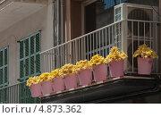 Купить «Балкон в европейском городе, украшенный жёлтыми цветами в розовых вёдрах», фото № 4873362, снято 30 мая 2013 г. (c) Анастасия Богатова / Фотобанк Лори