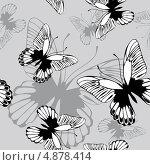 Бесшовный серый фон с бабочками. Стоковая иллюстрация, иллюстратор Наталья Гребенникова / Фотобанк Лори