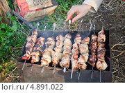 Купить «Приготовление шашлыка на закате», эксклюзивное фото № 4891022, снято 7 мая 2012 г. (c) Алёшина Оксана / Фотобанк Лори