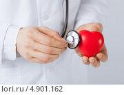 Купить «Молодой врач с красным пластиковым сердцем», фото № 4901162, снято 10 апреля 2013 г. (c) Syda Productions / Фотобанк Лори