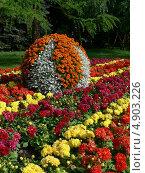 Благоустройство сада. Стоковое фото, фотограф Анна Демьяненко / Фотобанк Лори