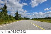 Летний пейзаж. Дорога в бесконечность. Стоковое фото, фотограф Валерия Попова / Фотобанк Лори
