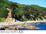Берег Японского моря (2013 год). Редакционное фото, фотограф Евгений Дедовец / Фотобанк Лори