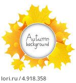 Купить «Фон из желтых осенних листьев с местом для текста», иллюстрация № 4918358 (c) Евгения Малахова / Фотобанк Лори