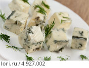 Купить «Итальянкий голубой сыр с плесенью- Горгонзолла», фото № 4927002, снято 30 июня 2011 г. (c) ElenArt / Фотобанк Лори