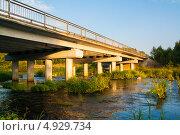 Мост и река. Стоковое фото, фотограф Алла Королева / Фотобанк Лори