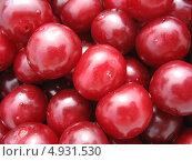 Купить «Фон из ягод вишни, крупный план», фото № 4931530, снято 6 августа 2013 г. (c) Светлана Ильева (Иванова) / Фотобанк Лори