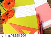 Купить «Скоро в школу. Тетради, ручки и букет цветов лежат на столе.», фото № 4938506, снято 9 августа 2013 г. (c) Лариса Капусткина / Фотобанк Лори