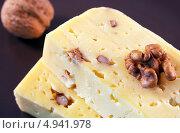 Купить «Сыр с грецкими орехами», фото № 4941978, снято 11 августа 2013 г. (c) Румянцева Наталия / Фотобанк Лори