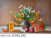 Осенний натюрморт с рябиной и медом. Стоковое фото, фотограф Julia Ovchinnikova / Фотобанк Лори