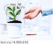 Купить «Идея растущих доходов - символическое деревце из финансовых графиков в горшке», фото № 4950610, снято 13 апреля 2013 г. (c) Sergey Nivens / Фотобанк Лори