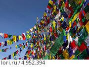 Купить «Множество разноцветных флажков с буддийскими молитвами», фото № 4952394, снято 20 апреля 2013 г. (c) Александр Давыдов / Фотобанк Лори