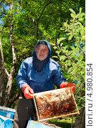 Пчеловод на работе. Стоковое фото, фотограф Омар Омаров / Фотобанк Лори