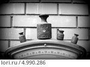 Весы и гири. Стоковое фото, фотограф Дмитрий Зубаркин / Фотобанк Лори