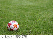 Мяч лежит на газоне (2013 год). Редакционное фото, фотограф Buyanka / Фотобанк Лори