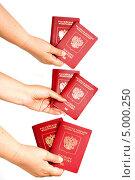 Паспорта Российской Федерации в руках человека. Стоковое фото, фотограф Елена Заммоева / Фотобанк Лори