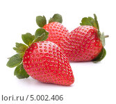 Купить «Три ягоды клубники», фото № 5002406, снято 3 января 2012 г. (c) Natalja Stotika / Фотобанк Лори