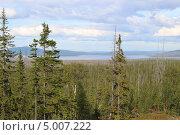 Таежный пейзаж. Стоковое фото, фотограф Андрей Голяк / Фотобанк Лори